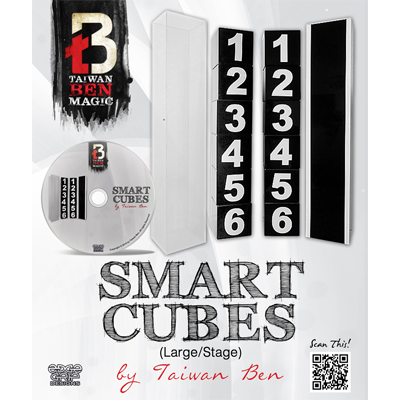 Smart Cubes (Large / Stage) - Taiwan Ben