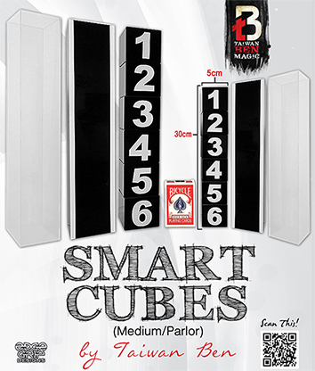 Smart Cubes (Medium / Parlor) - Taiwan Ben