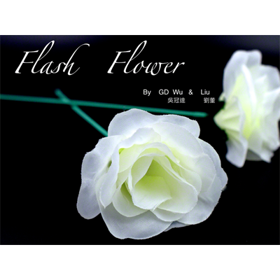 White Flash Flower (2pk.) - by GD Wu & GT magicstore