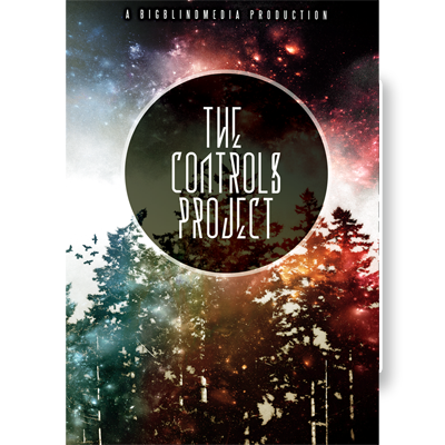 The Controls Project Video DOWNLOAD