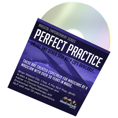 Perfect Practice (Empowerment Series) by Brian Watson