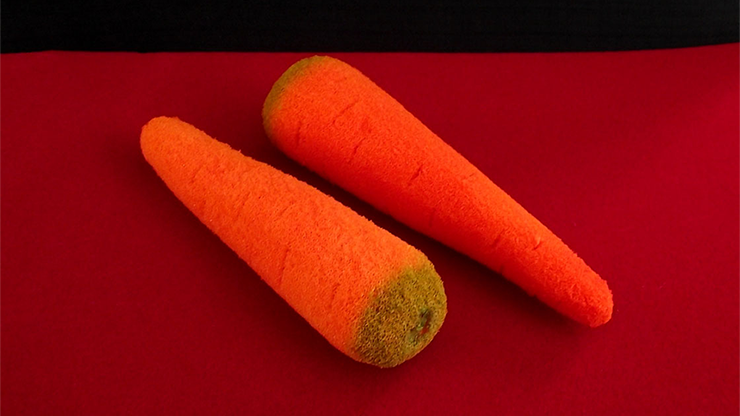 Sponge Carrots (2 pieces)