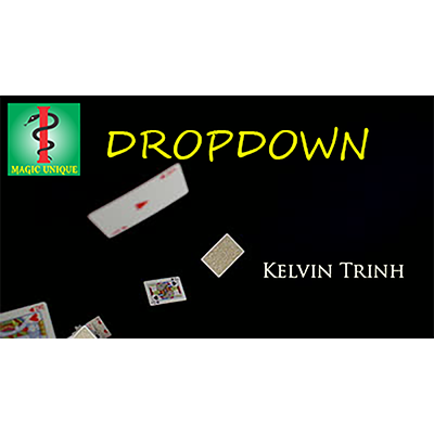 Dropdown by Kelvin Trinh & Magic Unique Video DOWNLOAD