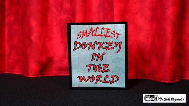 Donkey Story - Mr. Magic