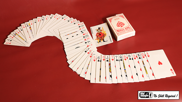 Electric Deck (52 Cards Bridge)... MagicWorld Magic Shop