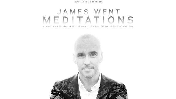 James Went's Meditations Video DOWNLOAD