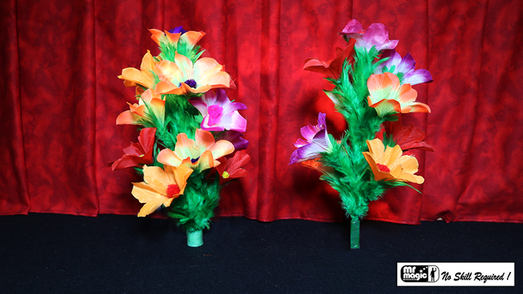 Double Flower Bouquet - Mr. Magic