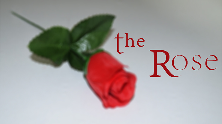 The Rose Video DOWNLOAD