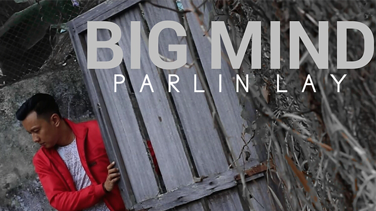 Big Mind Video DOWNLOAD