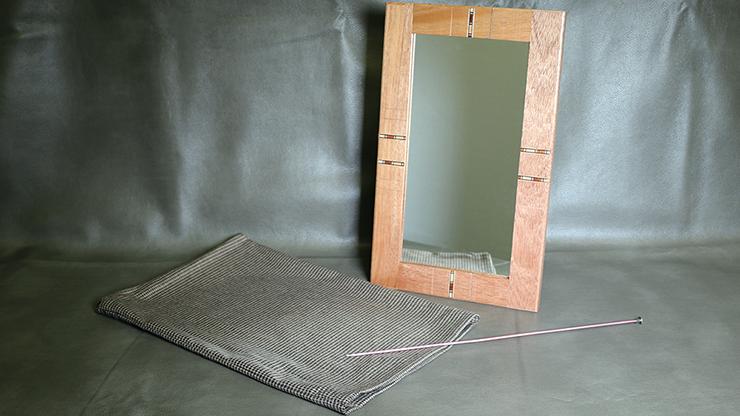 Flexible Mirror/Needle Through Mirror by Tony Karpinski