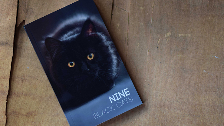 Nine Black Cats by Neemdog and Lorenzo - Book