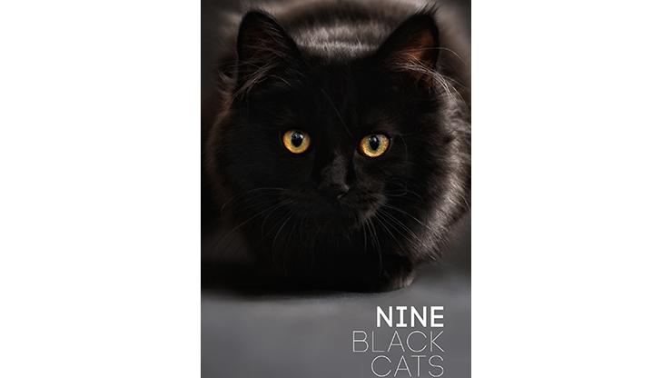 Nine Black Cats by Neema Atri eBook DOWNLOAD