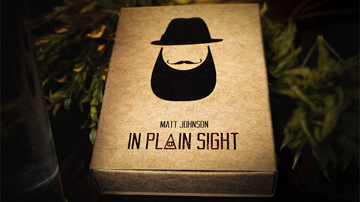 In Plain Sight (Accesorio e Instrucciones Online) & Matt Johnson