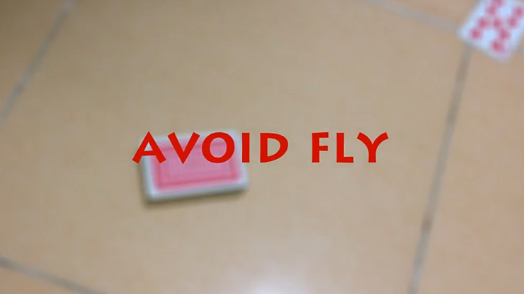 Avoid Fly by Kelvin Trinh