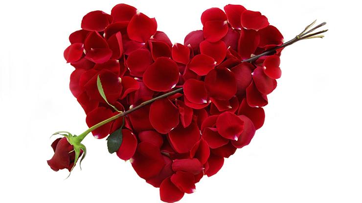Valentine Video DOWNLOAD