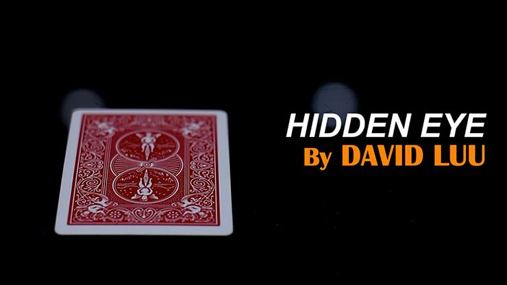 Hidden Eye Video DOWNLOAD