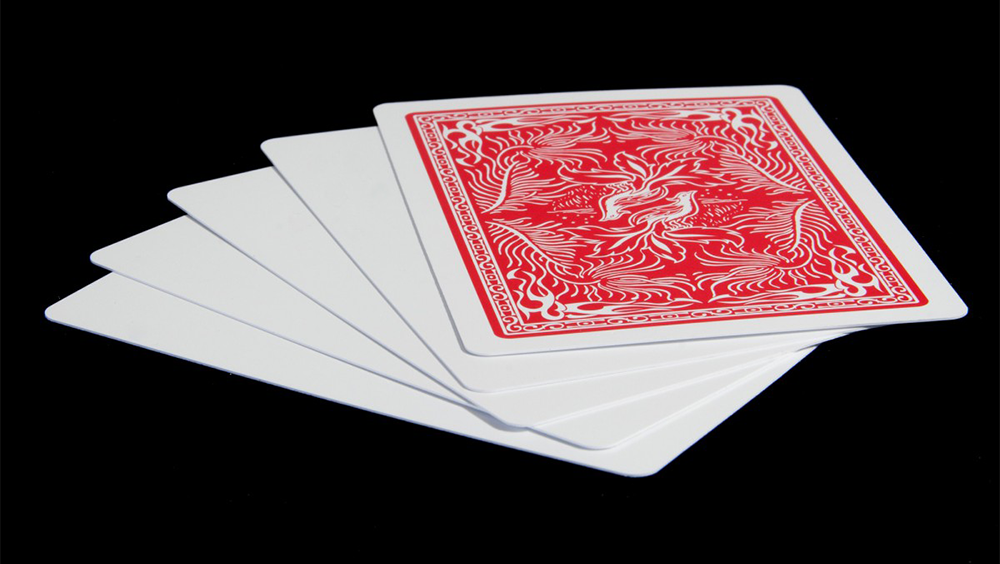 Insight Blank Face Cards (Set of 5) by Hugo Shelley