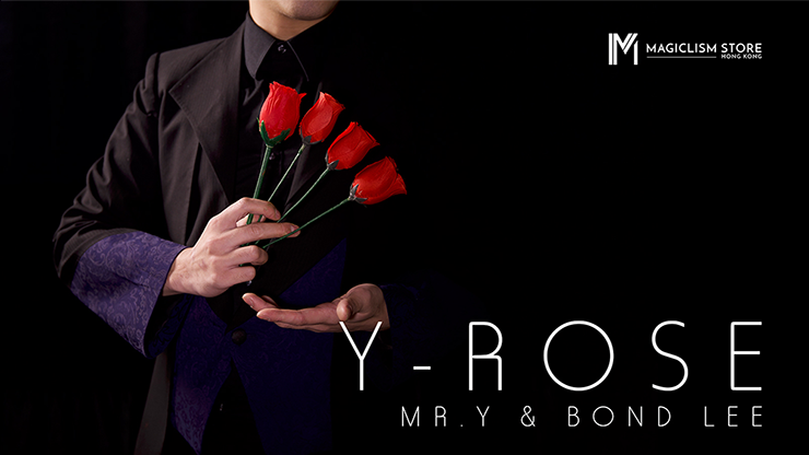 Y-Rose by Mr. Y & Bond Lee Produktionsgimmick für vier Rosen