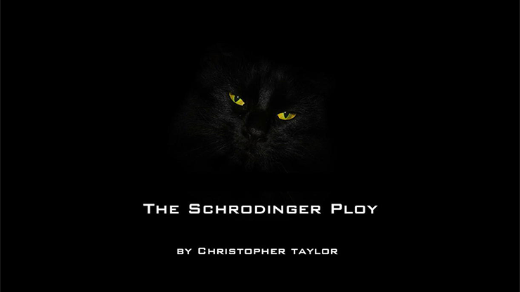 The Schrodinger Ploy by Christopher Taylor video DOWNLOAD