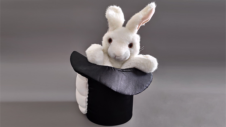 Rabbit in Hat by Tora Magic