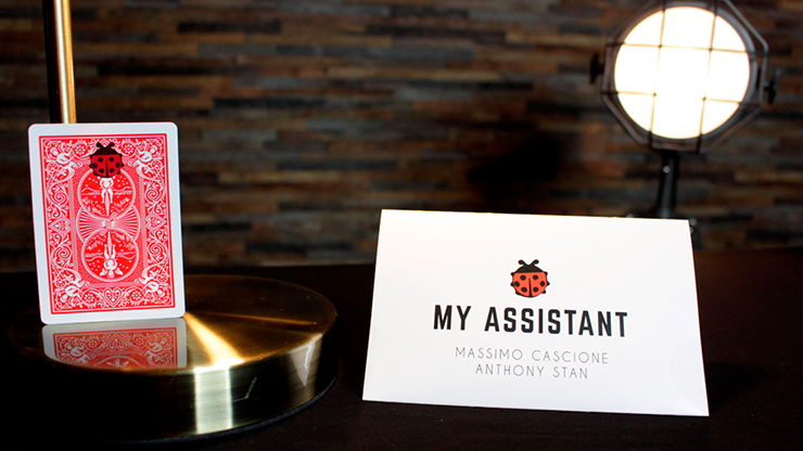 My Assistant by Massimo Cascione and Anthony Stan