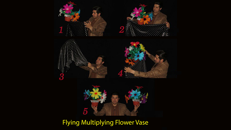 Flying Multiplying Flower Vase - Black Magic