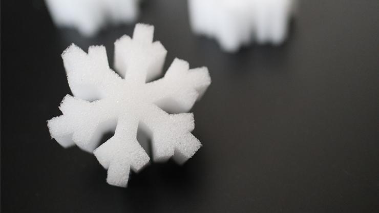 SNOWFLAKE SPONGES - Hugo Choi