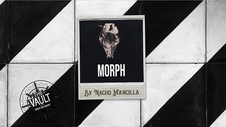 The Vault - MORPH by Nacho Mancilla Mixed Media DOWNLOAD