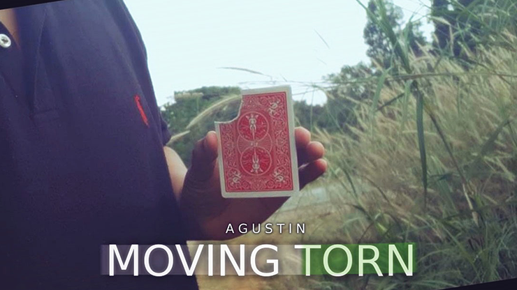 Moving Torn by Agustin video DOWNLOAD