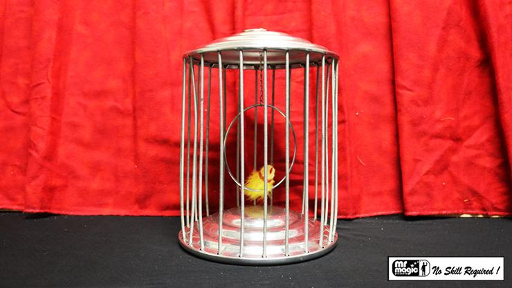 Spring Production Birdcage - Mr. Magic