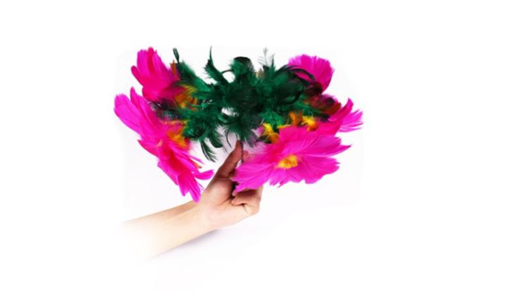 Flower Salute - 7 MAGIC
