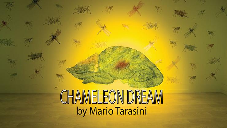 Chameleon Dream - Mario Tarasini video DOWNLOAD