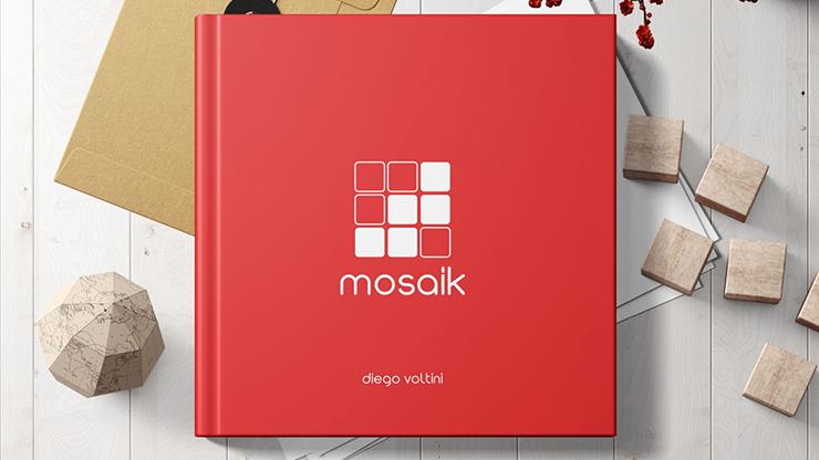 MOSAIK - Diego Voltini  Book