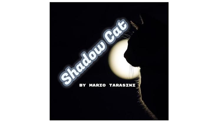 Shadow Cat by Mario Tarasini video DOWNLOAD