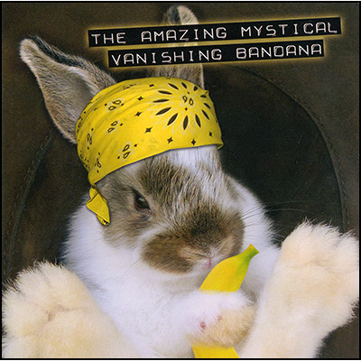 Amazing Mystical Vanishing Bandana (Standard Version) - Robert Haas & Magic Enhancer