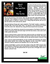 Devil of a Bar and Pub Flyer Thumbnail