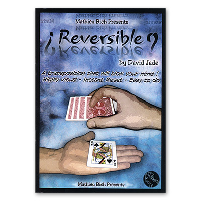 Reversible by Mathieu Bich