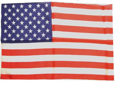 Seda - Bandera Americana 13x20 - Royal