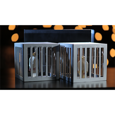 Amazing Cages from Frame - Tora Magic