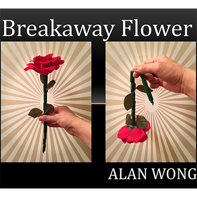 The Breakaway Flower by Alan Wong - Trick