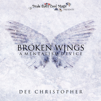 Broken Wing by Dee Christopher