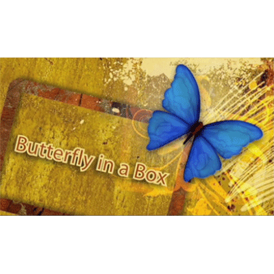 Butterfly In a Box - Mark Presley