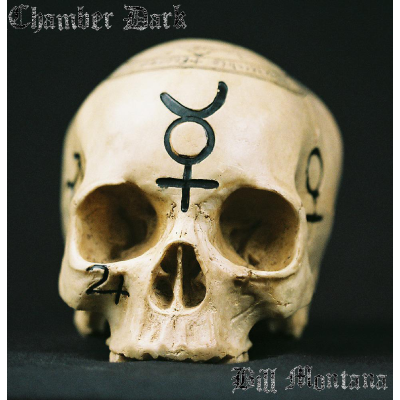 Chamber Dark by Bill Montana - eBook DOWNLOAD