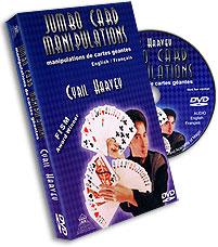 Jumbo Card Manipulation Harvey