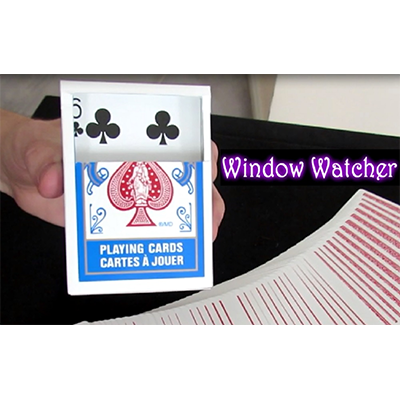 Window Watcher by Aaron Plener Video DOWNLOAD