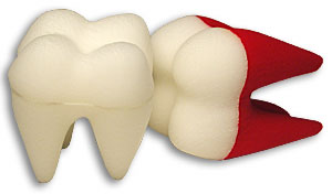 "Foam Tooth 4 1/2"" Goshman (White)"