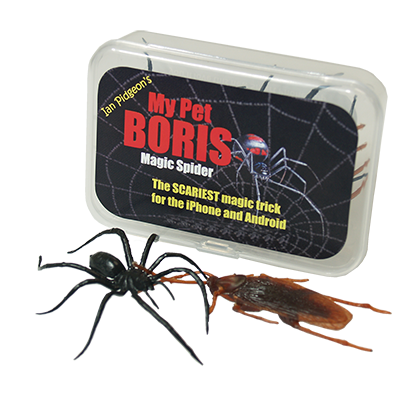 Boris My Pet Spider