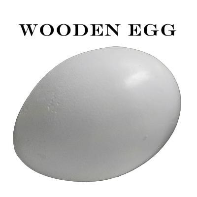 Wooden Egg - Mr. Magic