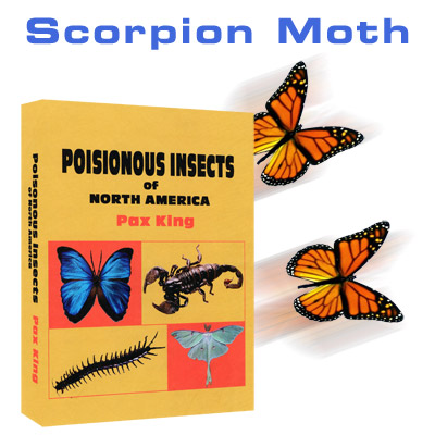 Scorpion Moth by Mac King and Peter Studebaker