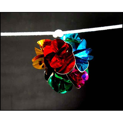 Flower on Rope - Uday